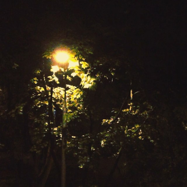 Монотонный шум дождя